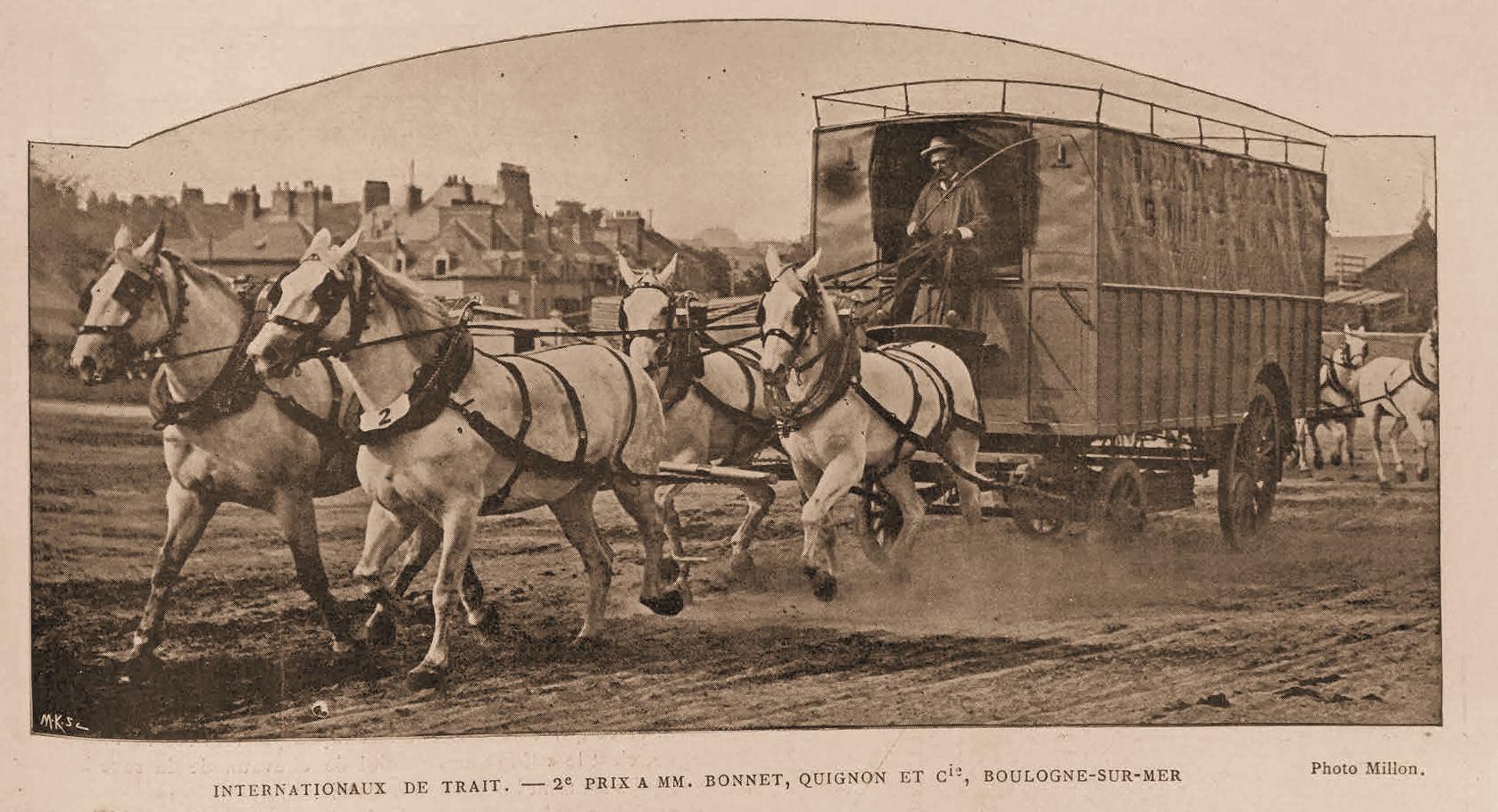Le concours hippique de Boulogne sur mer 1901