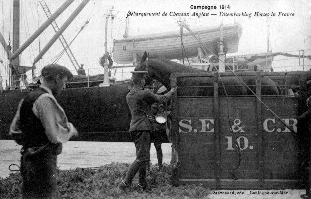 Guerre 14 Débarquement de chevaux anglais sur le port de Boulogne